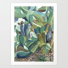 Plant Study, Baltimore Conservatory Art Print