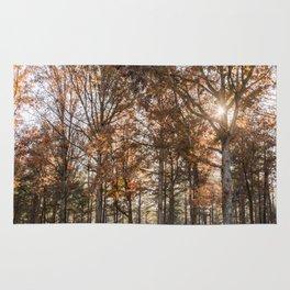 Fall Colors Rug