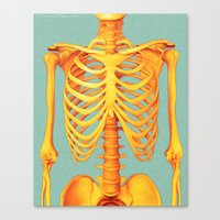 skeleton Canvas Prints featuring Skeleton by ShannonPosedenti