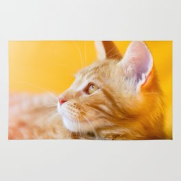 Red-white tabby Maine Coon cat Rug