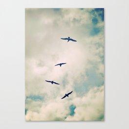 Bird Dance. Canvas Print