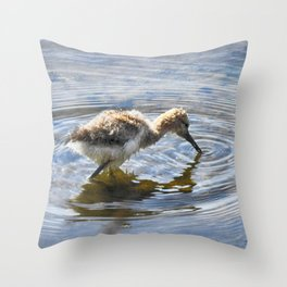 American Avocet Chick Throw Pillow