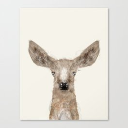 little deer fawn Canvas Print