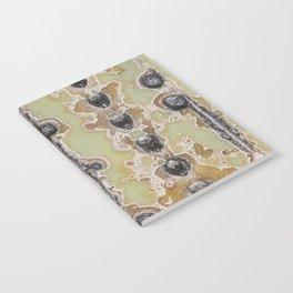 Cactus Texture Notebook