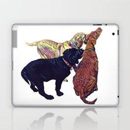 Three Amigos II Laptop & iPad Skin