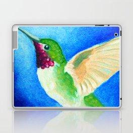 Colorful Hummingbird Laptop & iPad Skin