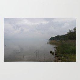 Moody Morning At The Lake Rug