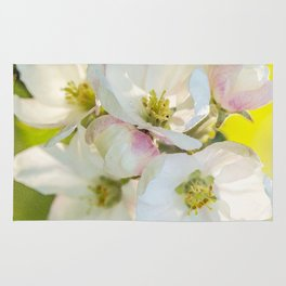 Close-up of Apple tree flowers on a vivid green background - Summer atmosphere Rug