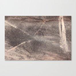 Sandpaper Texture Canvas Print