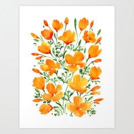 Watercolor California poppies Kunstdrucke