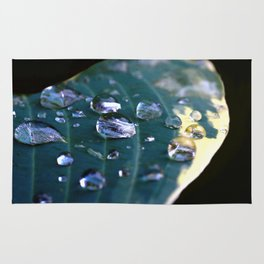 Story of a water drop Rug