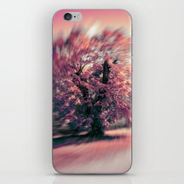 The tree of spring iPhone Skin