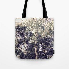 Dappled Light Filtered Through Trees Tote Bag