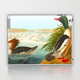 Goosander or Common Merganser Laptop & iPad Skin