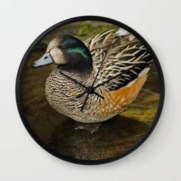 Chiloe Wigeon Wall Clock