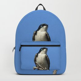 Male Tree Swallow Backpack