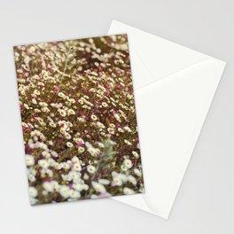 Daisy Fields Stationery Cards