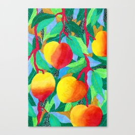 summer peaches Canvas Print