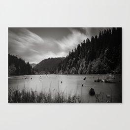red lake Canvas Print