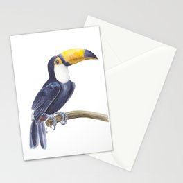 Toucan, tropical bird Stationery Cards