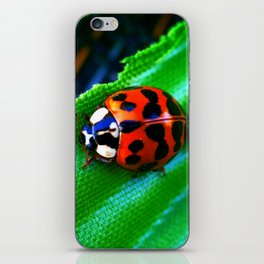 Ladybug on Leave iPhone Skin