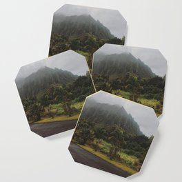Rustic Mountains Coaster