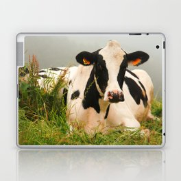 Holstein cow facing camera Laptop & iPad Skin