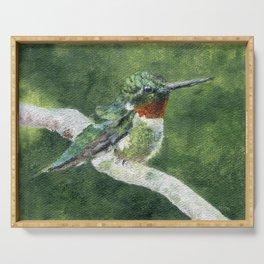Romeo the Hummingbird by Teresa Thompson Serving Tray