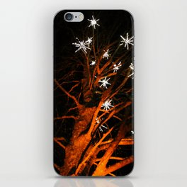 stars in the tree iPhone Skin