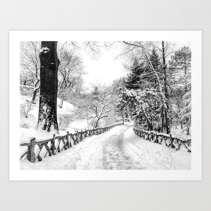 Central Park Winter Path in Shakespeare Garden Art Print