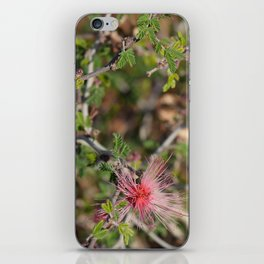 Desert Wildflower Bush iPhone Skin
