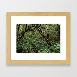 Australian Jungle Framed Art Print
