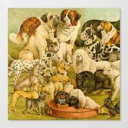 Dog Breeds Canvas Print