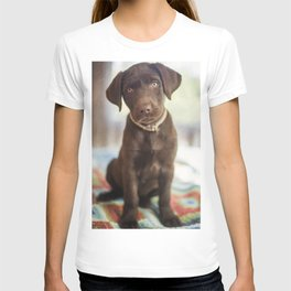 Labrador Love T-shirt