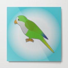 A quaker parrot Metal Print