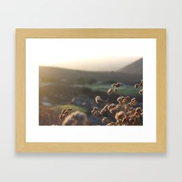 Wild flowers in the Valley Framed Art Print
