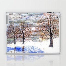 Snow Grey Skies over Moon Lake in Dewdrop Holler Laptop & iPad Skin