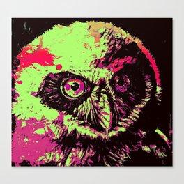 Rainbow Spectacled Owl Canvas Print