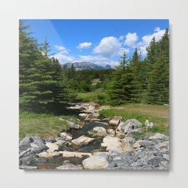 Mountain Brook In Th Rockies Metal Print