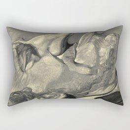 Springsteen Rectangular Pillow