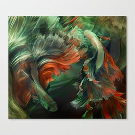 """Betta splendens Deep water (Siam fighter)"" Canvas Print"