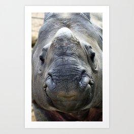 Smiling Asian Rhino Art Print