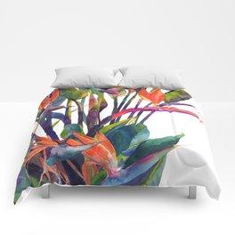 The bird of paradise Comforters