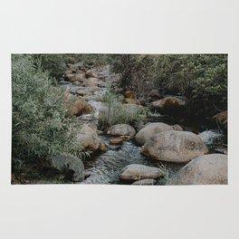 kaweah river Rug