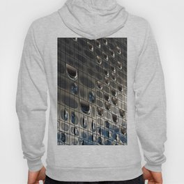 Metallic reflection Hoody