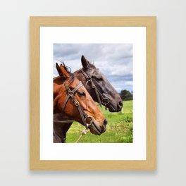 The Horses Framed Art Print
