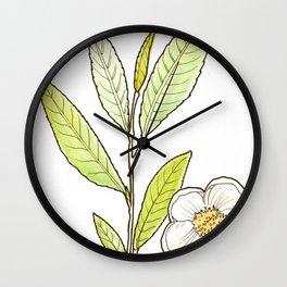 tea botanicals | Camelia // Tea (black, green, oolong) Wall Clock