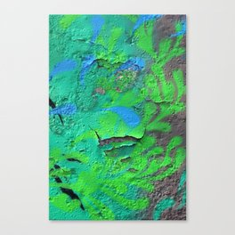 Green Entropy II Canvas Print