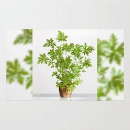 Pelargonium citrosum plant Rug