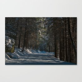 Snowy drive in Clear Creek Canvas Print